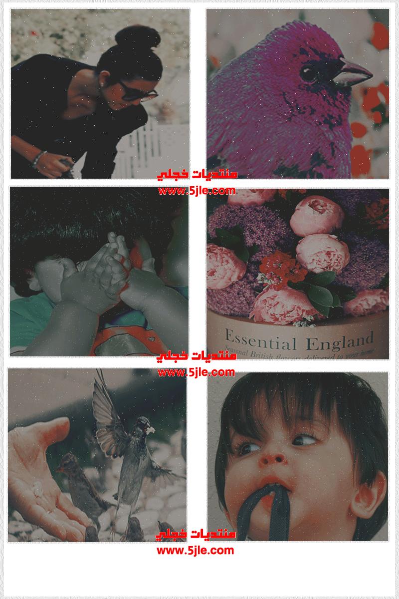 خلفيات ايباد بنات 2012