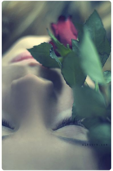 ياللي تقول المساء الورود